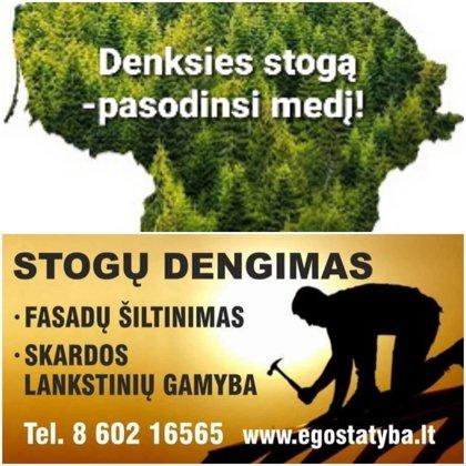 Stogų dengimas egostatyba nori prisidėti prie miškų gausinimo ir skelbia akciją : Už kiekv